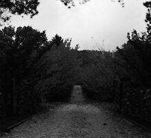 Autumn Road by RubyRose