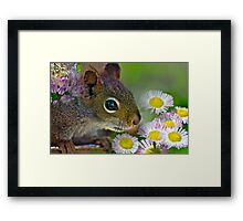 Flowers and Squirrel Framed Print