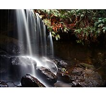 Spirit of the Bush - The Grotto, Fitzroy Falls, NSW Photographic Print