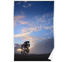 tree in field vertical Poster