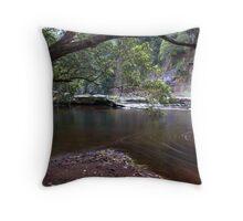 Swirls - Kangaroo Valley, NSW Throw Pillow
