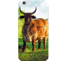 Toro! Toro! Taurus! iPhone Case/Skin