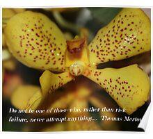 Thomas Merton Quote Poster