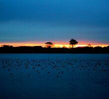 Dawn over sleepy Abberton by newbeltane
