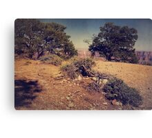 Rooted in Love Canvas Print