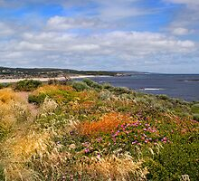 Flora on the cliff top by georgieboy98