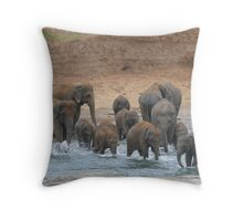 watering (Elephants in Sri-Lanka) Throw Pillow