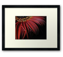 ~ the colour of my love ~ Framed Print