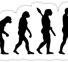 Evolution Knitting Sticker