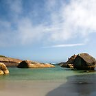 Elephant Cove by garts