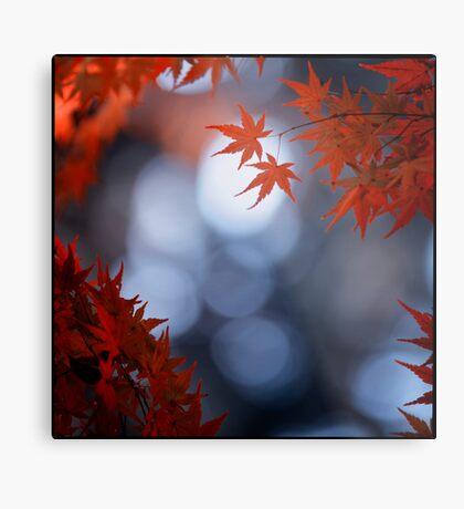 Autumn colours; Yoyogi Park, Tokyo, Japan Metal Print