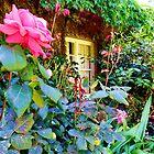 Window Garden! by TracyD
