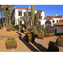 A Garden In Menorca Photographic Print