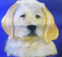 Labrador Pup by Nicole Gibson
