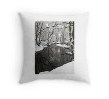River Through Snowy Woods Throw Pillow