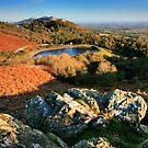 Malvern Hills: Autumn by Angie Latham