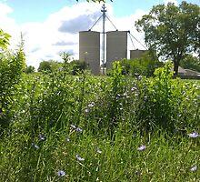 Grain Bins  by natureartbybeth