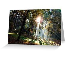 Shining Through Greeting Card