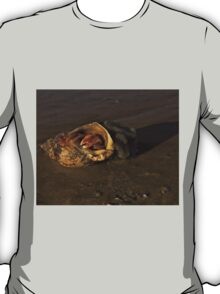 Hermit Crab on Fahan Beach T-Shirt