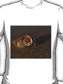 Hermit Crab on Fahan Beach T-Shirt