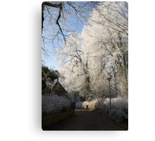 Frost decorated park Canvas Print