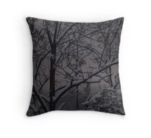 cold winter morning Throw Pillow