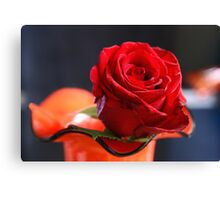 Very red Canvas Print