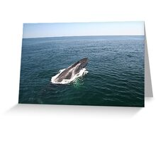 A Whale of a Tale!  Part 2, please read in order! Greeting Card