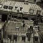 Paris Rooftop by ralarcon