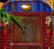 Carl's Front Door Way by George  Link