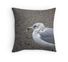Icy Gull Throw Pillow