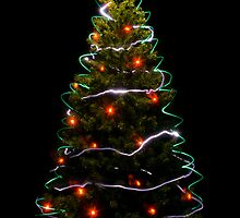 Christmas Tree Light by Kory Trapane