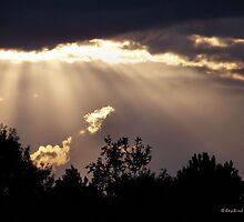 Shining Through by Kay  G Larsen
