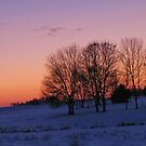 A Winter's Evening by lorilee