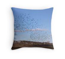 Wheeling Flock Throw Pillow