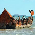 """Wreck of the """"Carpentaria Light Ship"""" #2 by Marilyn Harris"""