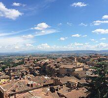Under the Tuscan Sun 2 by Robin O'Luanaigh