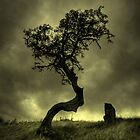hawthorn by Backbeat