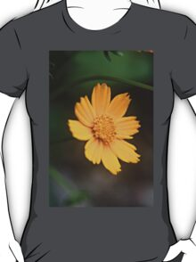 Yellow Daisy Summer Flower T-Shirt