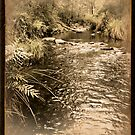 Tuponga River - Treated by Alex Evans