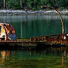 """Wreck of the S.S. """"William Pitt"""" - Canoe Bay by Marilyn Harris"""