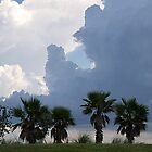 Florida storm by Tiaralynn