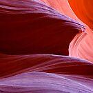 Red Crest by DawsonImages