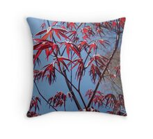 Japanese Maple  Throw Pillow