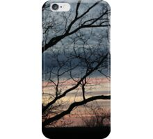 Dead tree at sunset iPhone Case/Skin