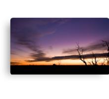 Mt Cooke Sunset Canvas Print
