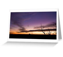 Mt Cooke Sunset Greeting Card