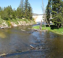 Hot Springs River by George Lloyd