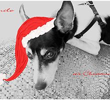 Buddy - A Christmas Card by Rosalie Scanlon