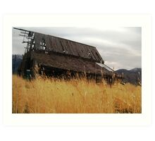A shelter from the storm? Art Print